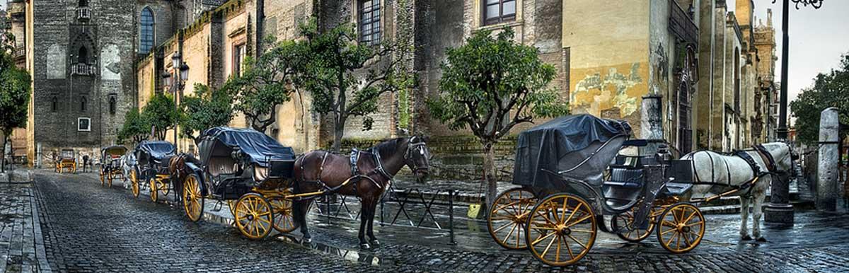 Film Services Sevilla - Seville - Andalucia - Camaleon Rental